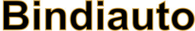 Logo Bindi Auto Lucca